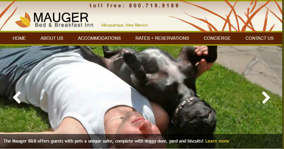 Dog Walking Services In Albuquerque